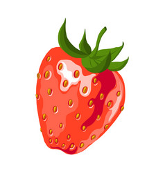 red strawberry vector image