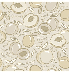 Background with apricot plum and peach vector