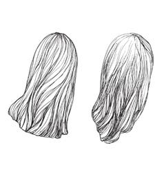 Hand drawn hair vector image