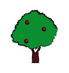 Tree nature foliage forest botanical image vector
