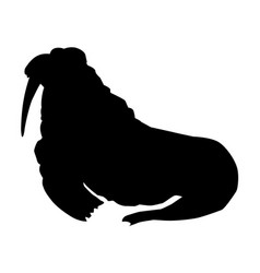 Walrus side view vector