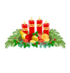 Christmas decoration advent wreath with fruit vector