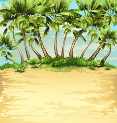 Beach with tropical palm vector