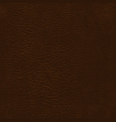 leather texture background vector image vector image
