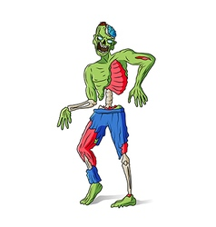 Zombie man colorful vector