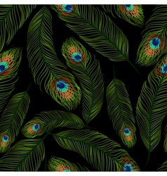 Seamless texture with peacock feathers vector image