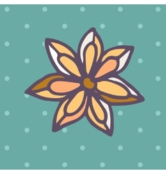 Flat icon of star anise vector