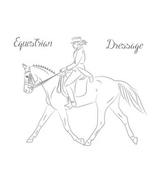 Dressage horse with rider vector