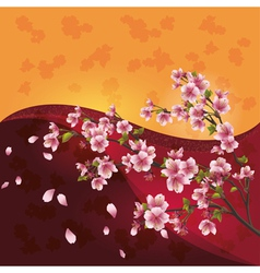Sakura blossom Japanese cherry tree on bright vector image vector image