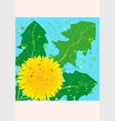 Square card yellow dandelion vector