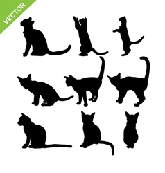 Cat silhouettes vector