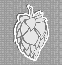 Gray hop flower beer ingredient vector