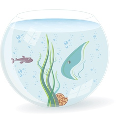 fish bowl vector image
