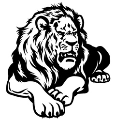 Lion black white vector
