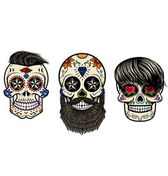 Bearded skulls vector