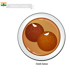 Gulab jamun or indian dessert balls vector