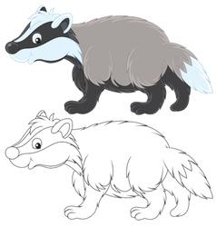 Badger vector