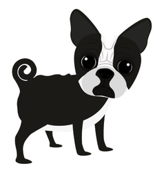 Cute dog cartoon icon vector