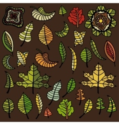 set of autumn leaves vector image