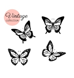 Set of four black and white butterflies silhouette vector image vector image