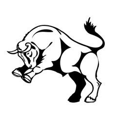 bull attacks vector image vector image