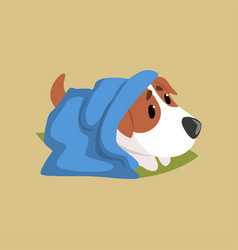 Jack russell puppy character lying on the floor vector