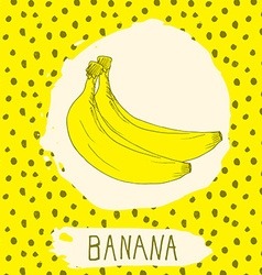 Banana hand drawn sketched fruit with leaf on vector image vector image