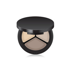 Makeup shadow bronzer corrector in black case vector