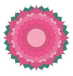 simple lotus flower mandala coloring book colored vector image