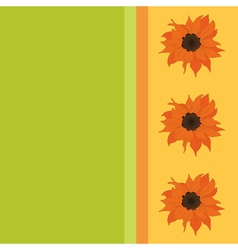 sunflower background vector image