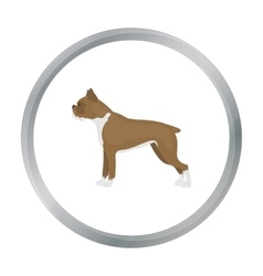 Boxer dog icon in cartoon style for web vector