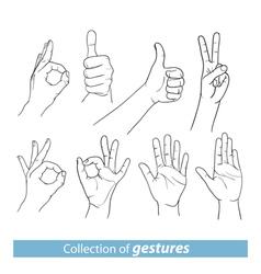 Gestures of human hands vector