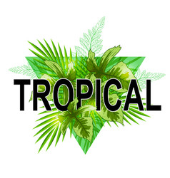 Green tropical banner vector