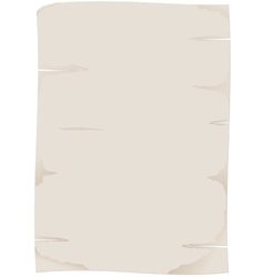 Paper papyrus vector