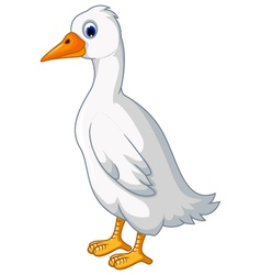 white duck cartoon vector image vector image