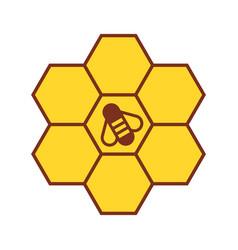 bee on honeycombs vector image vector image