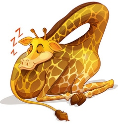 Cute giraffe sleeping alone vector image vector image