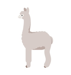 flat style of lama vector image vector image