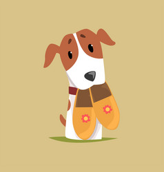 jack russell puppy character with slippers in its vector image