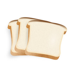 Pieces of bread on a white background vector