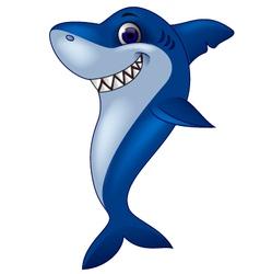 Smiling shark cartoon vector image vector image