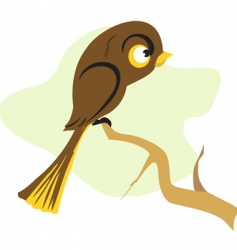 sparrow vector image vector image