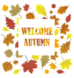 Welcome autumn sales banner with leaves leafs i vector