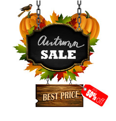 Autumn sale wooden signboard vector