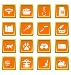 Cat care tools icons set orange vector