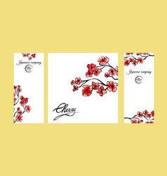 Four pages brochure with cherry blossom or sakura vector
