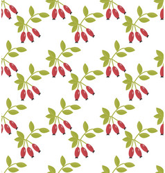 Rosehip seamless pattern hawthorn endless vector