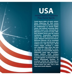 Background usa flag and text vector