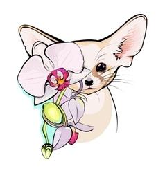 Cute fox fennec vector