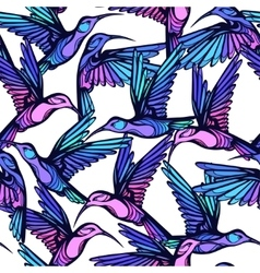 Flying tropical stylized colorful hummingbirds vector image